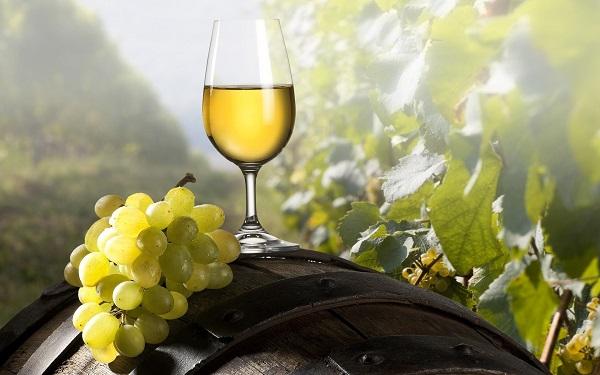 Muốn mua rượu vang ngon đúng chất phải tìm đúng chỗ