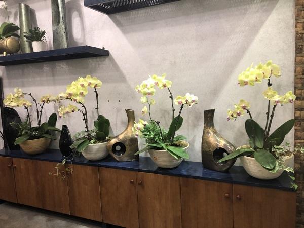 Yếu tố thuần Việt trong nghệ thuật cắm hoa sang - sành