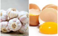 Mẹo diệt sạch sâu bệnh cho rau chỉ với tỏi và vỏ trứng cực kỳ hiệu quả
