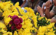 Video Hơn 1.600 cây hồng Bulgaria nhập về Hà Nội cho lễ hội 8/3