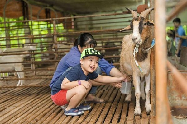 nông trại giáo dục là gì